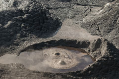 Bubbling mud in Rotorua Stock Photos
