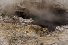 Bubbling Mud Royalty Free Stock Image