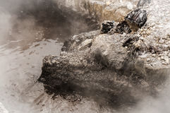 Bubbling Mud Royalty Free Stock Photo
