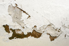 Bubbling and Peeling Paint as a Result of Rising Damp. Bubbling and peeling paid as a result of rising damp royalty free stock photography