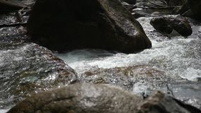 The bubbling water in a mountain river. Water flows over stones in a mountain river stock footage