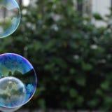 Bubblor Royaltyfria Bilder
