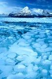 bubblor fryst metangas Arkivbild