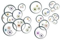 Bubblor med färgblommor Royaltyfri Foto