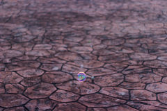 Bubblor på naturlig bakgrund Royaltyfri Foto
