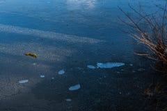 Bubblor under isen på en sjö royaltyfri bild