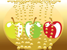 Bubbly apple drink Royalty Free Stock Image