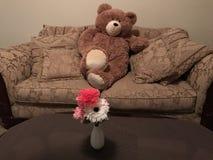 Bubbly bear cute Stock Image