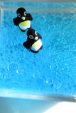 Bubbly Penguins. Penguins in fizzy blue liquid Royalty Free Stock Photo