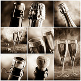 Bubbly wine. Set of bubbly wine picture stock photos