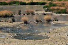 Bubling Mud volcano with water in Yellowstone nati Royalty Free Stock Photos