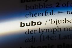 Bubo. Word in a dictionary.  concept Royalty Free Stock Photo