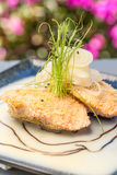 Bubu Arare Crusted Salmon royalty-vrije stock foto's