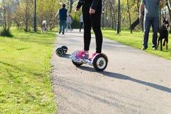 BUCAREST, ROMANIA, - 2 aprile 2016: La gente che utilizza hoverboard, un bordo a due ruote di equilibrio, nel parco Contenuto del Immagine Stock Libera da Diritti