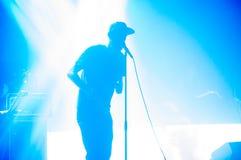 BUCAREST, ROUMANIE - 30 NOVEMBRE 2014 : Concert de Subcarpati pour R Image stock