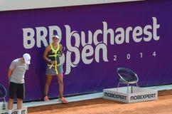 Bucarest s'ouvrent 2014(2) Image stock