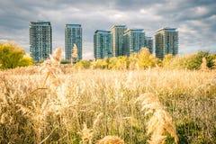 Bucarest vue par la lentille d'un explorateur Image stock