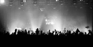 BUCARESTE, ROMÊNIA - 30 DE NOVEMBRO DE 2014: Concerto de Subcarpati para R Foto de Stock