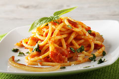 Bucatini Amatriciana, with parmesan cheese, tomato and bacon. On complex background Royalty Free Stock Photography