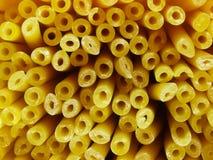 Bucatini spaghetti noodles Stock Image