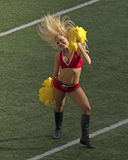 Buccaneer Cheerleader Stock Photography