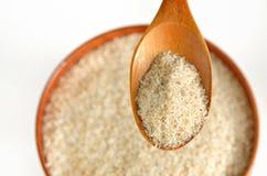 Bucce del seme dello Psyllium immagine stock