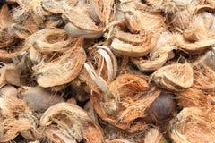 Bucce della noce di cocco Fotografia Stock Libera da Diritti