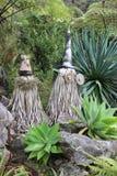 Bucce dispari dell'albero vestite come stregoni in giardino Immagine Stock Libera da Diritti