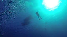 Buceador bajo superficie del agua almacen de metraje de vídeo