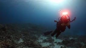 Buceador del cameraman que nada el submarino profundo en el Mar Rojo almacen de video