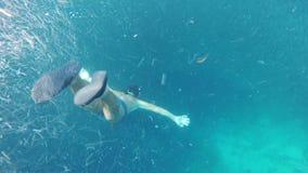 Buceador del hombre en el mar tropical almacen de video