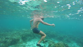 Buceador del hombre en el mar tropical metrajes