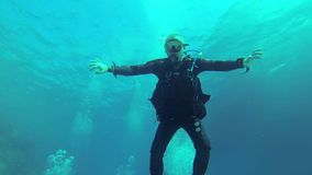 Buceador feliz, Mar Rojo almacen de video