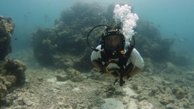 Buceador que explora los deeps azules almacen de video