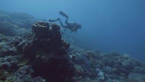 Buceador que flota el mar azul subacuático cerca del arrecife de coral y de pescados Salto del mar almacen de video