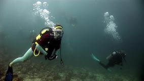 Buceador que nada el submarino profundo almacen de metraje de vídeo