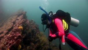 Buceador subacuático en el fondo del fondo del mar almacen de metraje de vídeo