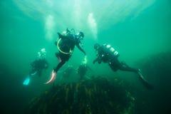 Buceadores subacuáticos en el St Lawrence River imagen de archivo libre de regalías
