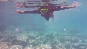 Buceando en el mar, Phuket, Tailandia almacen de metraje de vídeo