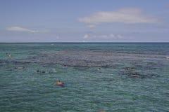 Buceando en la provincia de Camagüey, Cuba Fotos de archivo libres de regalías
