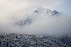 Bucegi在冬天 库存照片