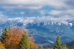 Bucegi山在秋天 库存照片