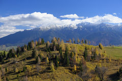 Bucegi山在罗马尼亚 免版税库存照片