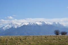 Bucegi berg i vårtid Bucegi berglandskap i vintersäsongen med snö som täcker träden och bergen i R arkivbilder