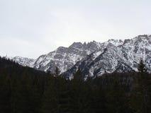 Bucegi berg - Rumänien Royaltyfria Bilder