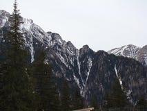 Bucegi berg - Rumänien Arkivbild