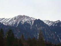 Bucegi berg - Rumänien Arkivfoton