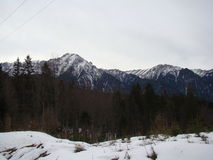 Bucegi-Berge - Rumänien Lizenzfreie Stockbilder