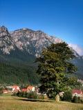 Bucegi Berge in Rumänien Stockbilder