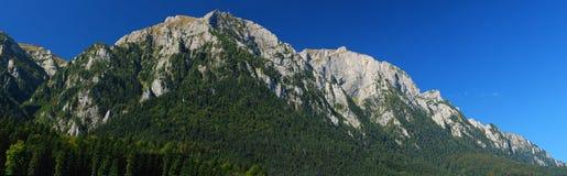 bucegi busteni喀尔巴阡山脉的山土坎 免版税库存图片